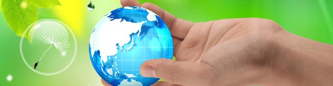 Umweltbeauftragter und Umweltberatungstätigkeit